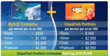 glassfish_1.jpg