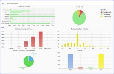 SAP HANA, BO Strategic Workplanning