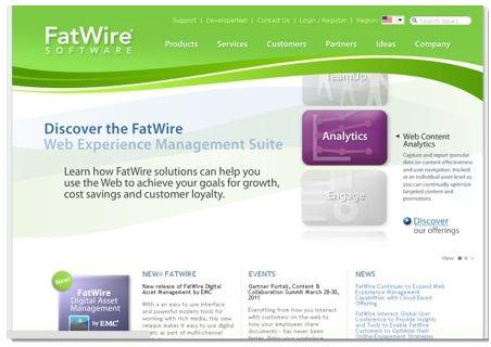 FatWire software  optimisation de sites web