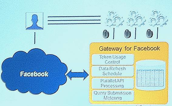 MicroStrategy_Facebook Architecture parallele