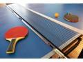 Ping-pong © Sergey Ryzhov - Fotolia.com