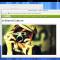GNOME 3.4 - 1 - vue d'ensemble © The GNOME Project