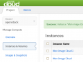 SUSE Cloud © SUSE