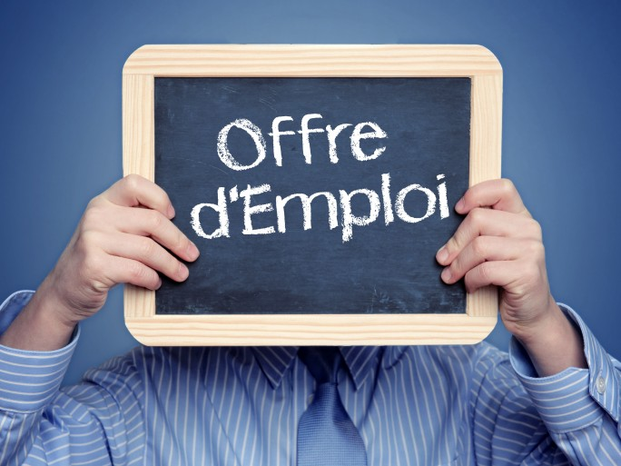 Emploi recrutement Silicon.fr © N-Media-Images Fotolia.com