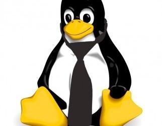 Dossier Linux monde des affaires