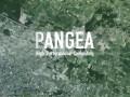 Total Pangea © Total