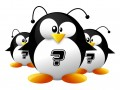Linux Quiz article © reynante