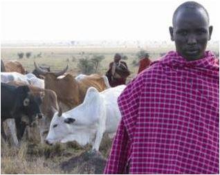 Ceva Santé Animale en Afrique_3