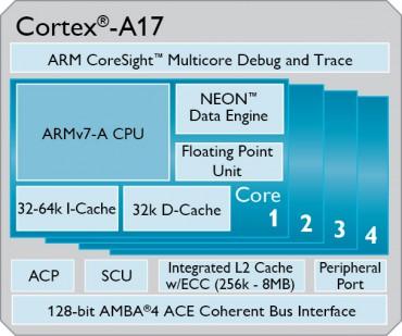 Cortex A12