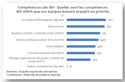 compétences Big Data © OPIIEC
