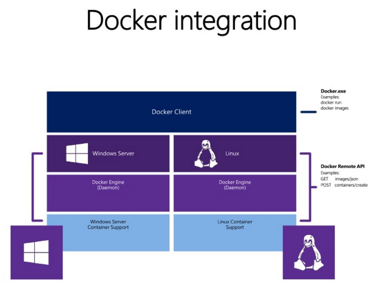 Intégration Docker
