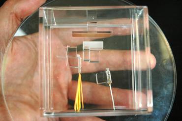 Le composant de base multipkexeur de fibre optique avec, sur le fond du boitier, la lame texturée, coeur du savoir-faire technologique de Cailabs.