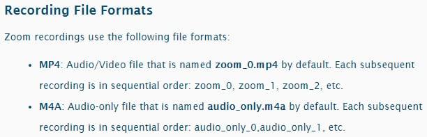 Zoom formats enregistrement