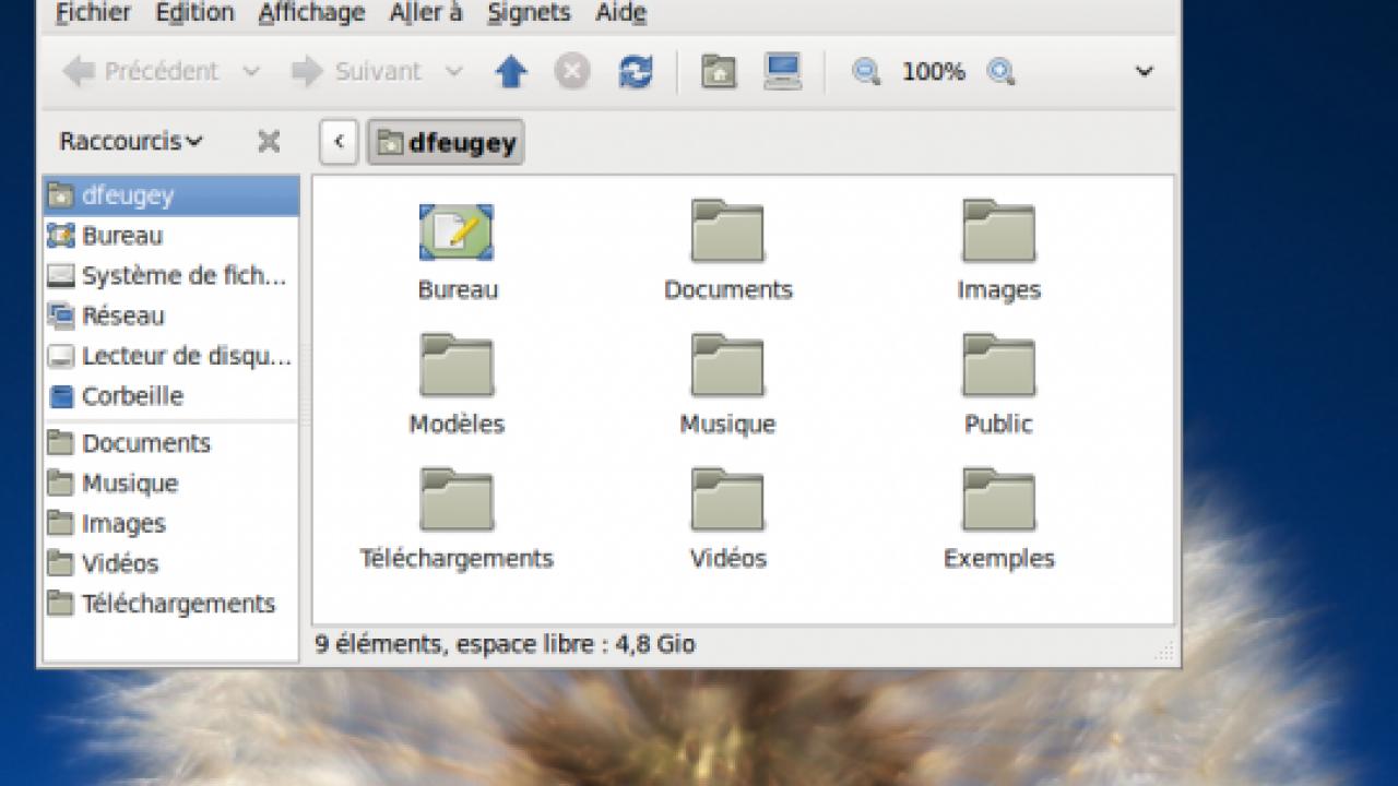 Ubuntu 10.04 LTS : plus légère que XP, plus fonctionnelle ...